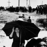 Il mercato del bestiame a Piazza Armerina (1961)